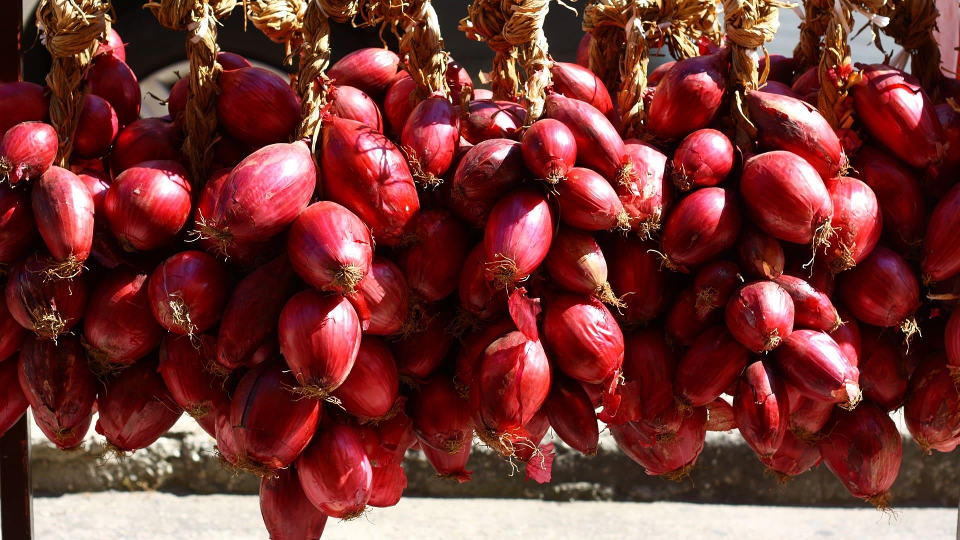 Cipolla Rossa di Tropea Calabria